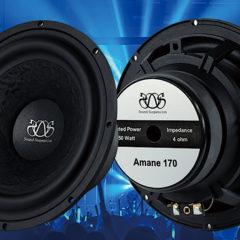 Sound Suspension/Amane